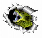 Ripped Torn Metal Design With Striking Snake Motif External Vinyl Car Sticker 105x130mm